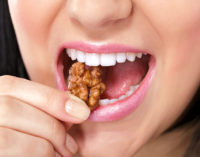 Putting on a Few Pounds? Try Eating Nuts