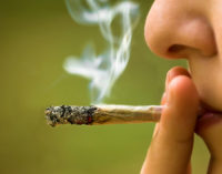 1 Time Use of Marijuana Enough to Affect Brains of Teens