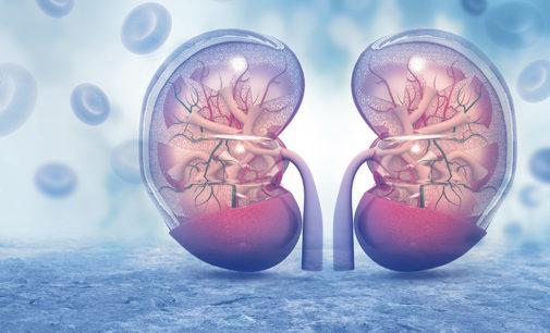 New Diabetes Drug Reduces Diabetic Caused Kidney Disease & Deaths