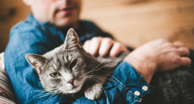 Mental Health Monday – Talking to your pet is not so wacky after all